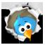 https://twitter.com/#!/NSKNGames